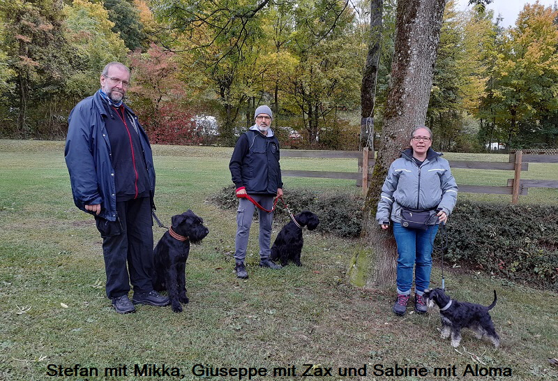 ZZL in Deggingen 11.10.20